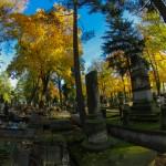 Cmentarz-Lipowa-Jesien-9