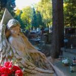 Cmentarz-Lipowa-Lublin-Jesien-4737