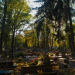 Cmentarz-Lipowa-Lublin-Jesien-4754