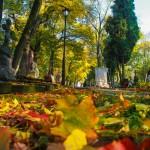 Cmentarz-Lipowa-Lublin-Jesien-4764